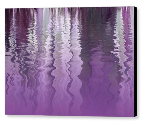 Purple Reflections by Gill Billington