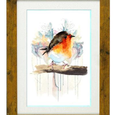 Erithacus Rebecular Robin