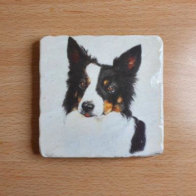 Marble Coaster - Border Collie