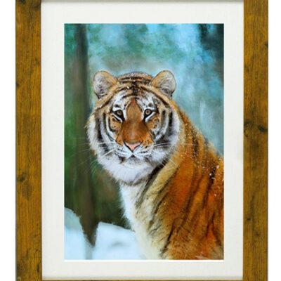 Felice Tigris - Framed